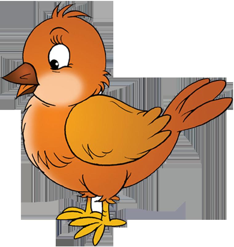 двух картинка птички малышам день новые акции